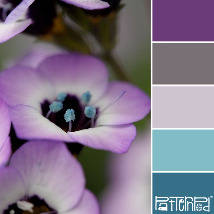 In Bloom #patternpod #patternpodcolor #color #colorpalettes // aka, my bedroom pallette