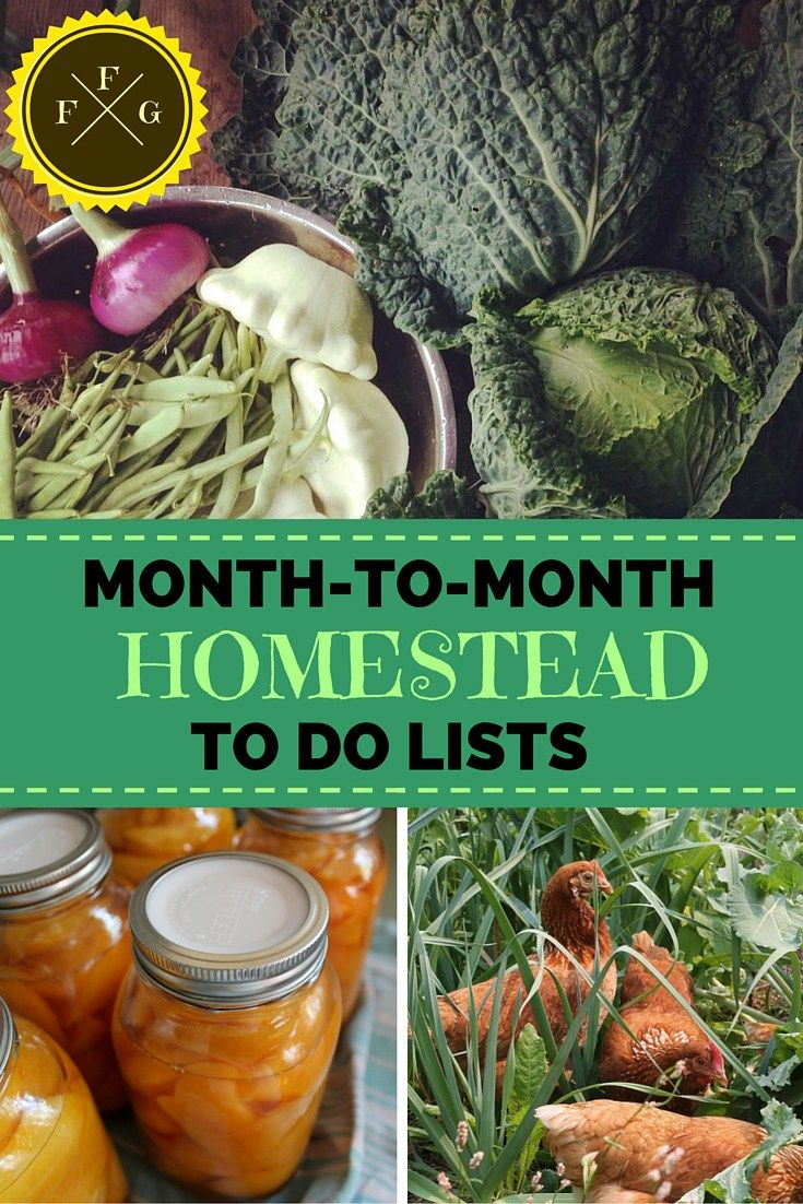 Comprehensive Website about Homesteading!! Stay super organized this season with monthly to do lists!