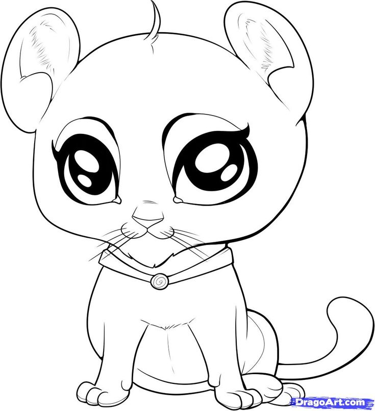 free printable cute animals coloring pages | 85 best images about Animals cut and paste and print and ...