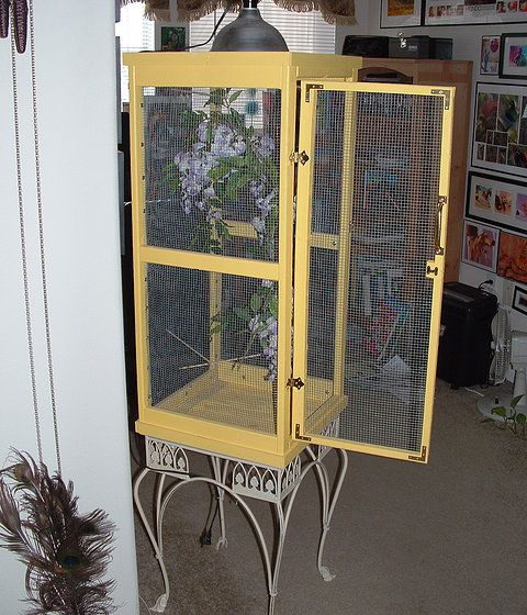 Erfly Enclosures For All Critters Great And Small Parrot Cage Diy Garden