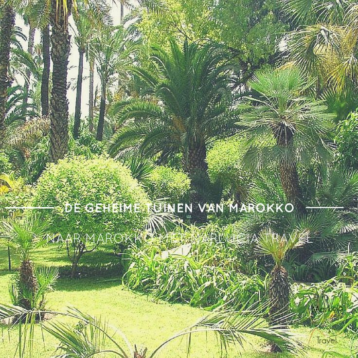 Ontdek de geheime tuinen van Marokko.