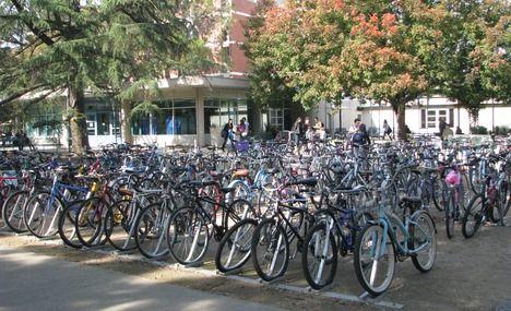 bikes at UCD!