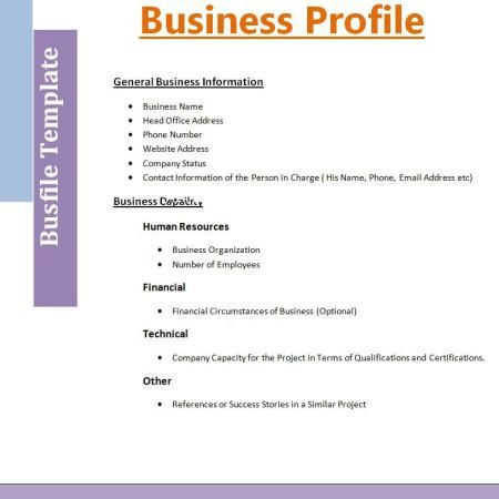 Business Profile Format | Free Word Templates