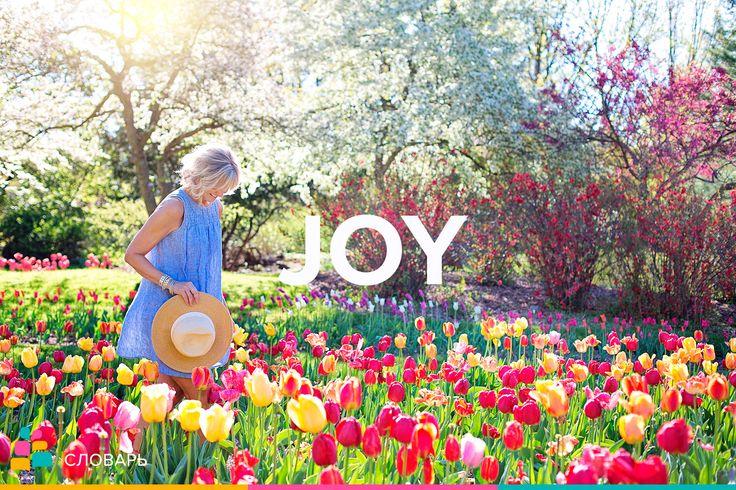 Joy |dʒɔɪ| — радость, удовольствие, веселье, радовать, веселить, веселиться  To radiate |ˈreɪdieɪt| joy — излучать радость, светиться от радости   To express joy — радоваться   In the ecstasy |ˈekstəsi| of joy — в порыве радости  Boundless |ˈbaʊndləs| / unbounded |ʌnˈbaʊndɪd| joy — безграничная, большая радость  Indescribable |ˌɪndɪˈskraɪbəbl| / ineffable |ɪnˈefəbl| joy — неописуемый восторг  Sheer |ʃɪr| / unbridled |ʌnˈbraɪdld| joy — несказанная радость  Примеры:  Joy go with you! / Счастья…