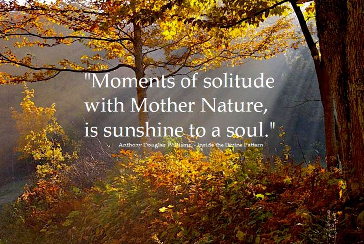 Moments of solitude with Mother Nature ~ is Sunshine to a Soul ~⚜~ Anthony Douglas Williams