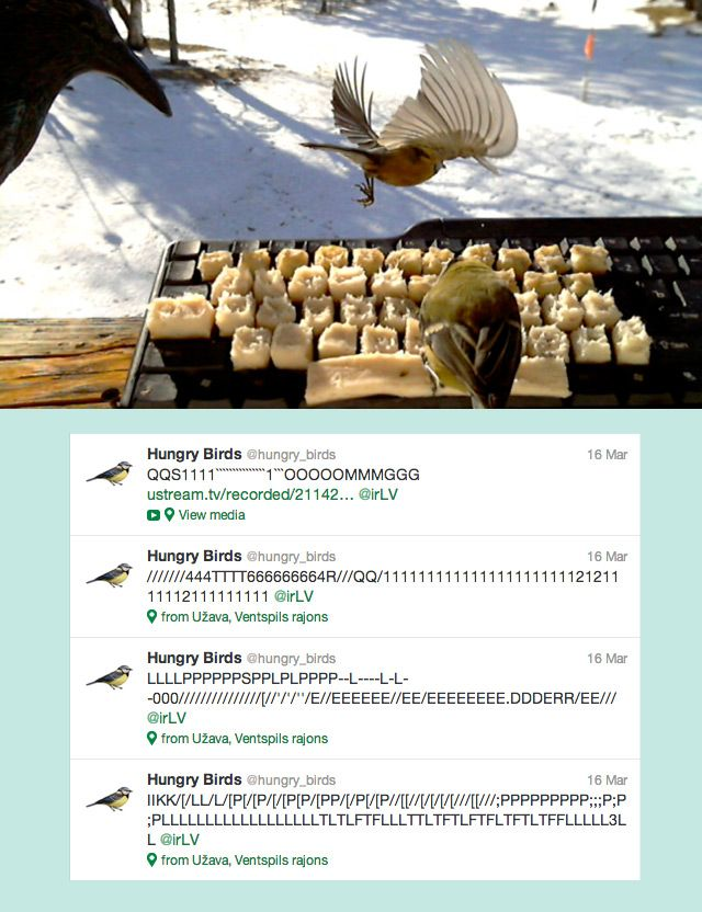 Latvian conceptual artist and creative director Voldemars Dudums created this insanely clever bird feeder using an old computer keyboard and some cubes of bacon fat. When the birds would fly down to snack their inadvertent key presses were fed to an api that parsed each little tap into a bonafide tweet on the @hungry_birds Twitter account.
