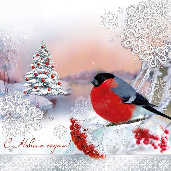 Оля юбилеем, открытки о снегири