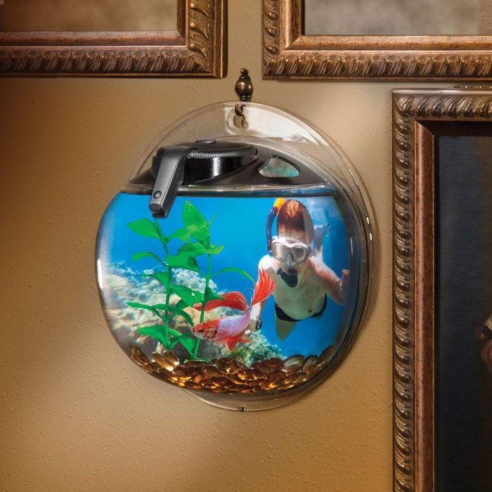 Elive betta bubble aquarium 5 gal black aquarium for Bubbles in betta fish tank