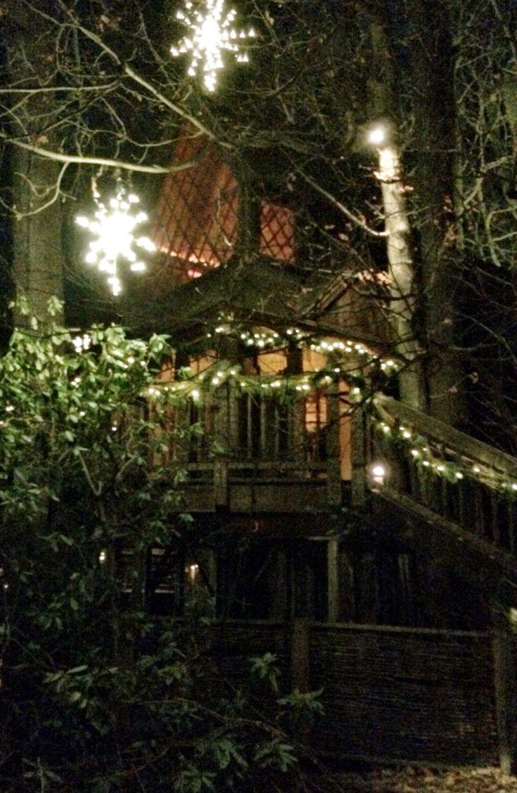 71 best A Longwood Christmas images on Pinterest | Lisa robertson ...