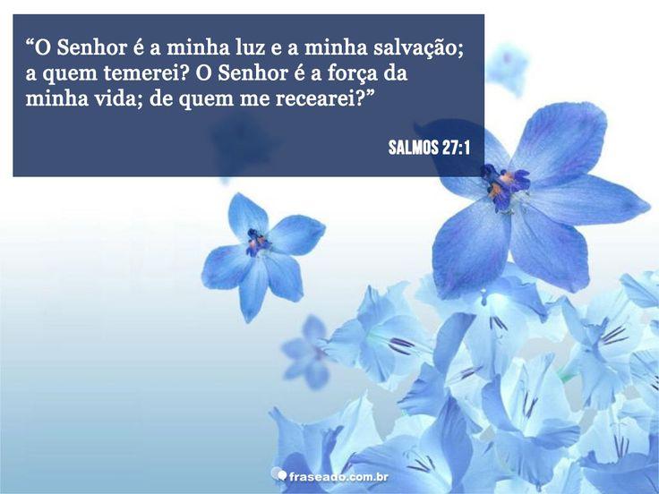 O Senhor é minha luz e minha salvação; a quem temerei? O Senhor é a força da minha vida; de quem me recearei? Salmos 27:1