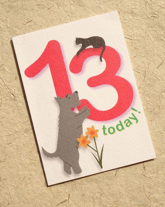 #Birthday Beasties from Luck & Judgement is a whimsical range of childishly innocent birthday cards featuring bright, bold numbers and a cast of cute and cheeky animals. Pac... #birthday #thirteen
