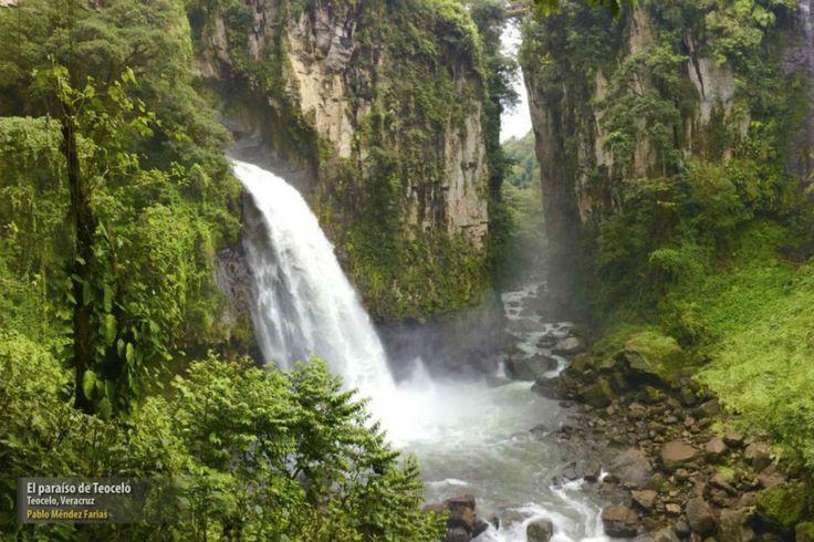 Las imágenes ganadoras del Primer Concurso Nacional de Fotografía de la Naturaleza mexicana (FOTOS) -Más de MX