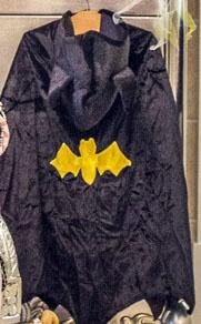Hooded bat cape