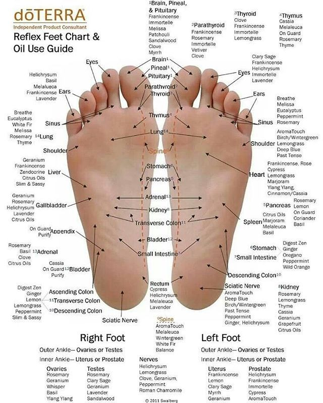 Hi lovelies! Happy Friday! 😁 Ever wonder why we rub essential oils on the bottoms of our feet? ************************************************ 1. The bottoms of our feet have the biggest pores so the oils will be absorbed much faster into our bloodstream. ------------------------------------------- 2. There might be some oils you do not favor in scent but still want to use due to their medicinal properties. So perfect place to rub them will be the bottoms of our feet…