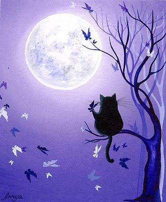 Gato bajo luna llena