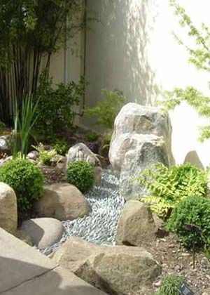17 Best images about xeriscape on Pinterest Gardens