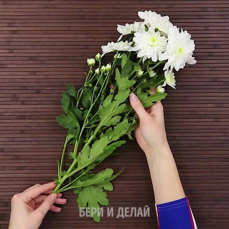 Как создать радужные цветы.