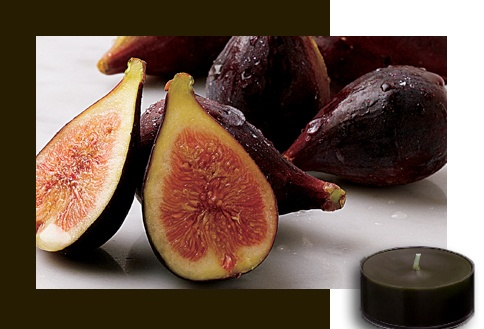 Fig Fatale  This irresistible blend of sensual fig, succulent fruits and velvety vanilla is deliciously rich. Fall under fig's captivating spell.