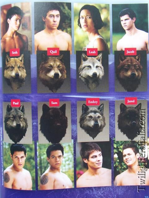The Wolf Pack i still think jacob is the hottest though