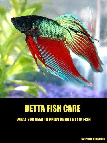 29 best betta fish images on pinterest fish aquariums for Betta fish care water