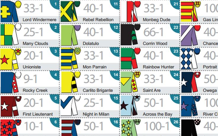 Download and print out our guide to all the runners and riders at the Grand   National at Aintree on April 11, 2015