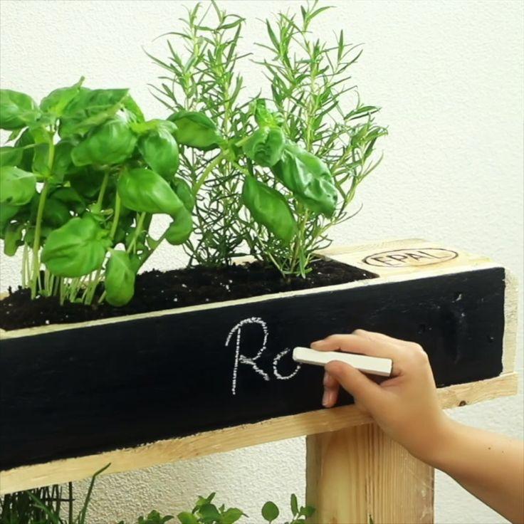 Sommerliche Ideen für Deinen Garten