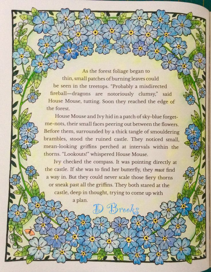 Amongst the forget me nots from Ivy and Inky by Johanna Basford.