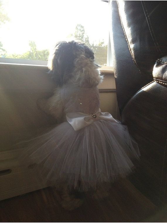 Dog Wedding Dress by YvettesLittleShop on Etsy