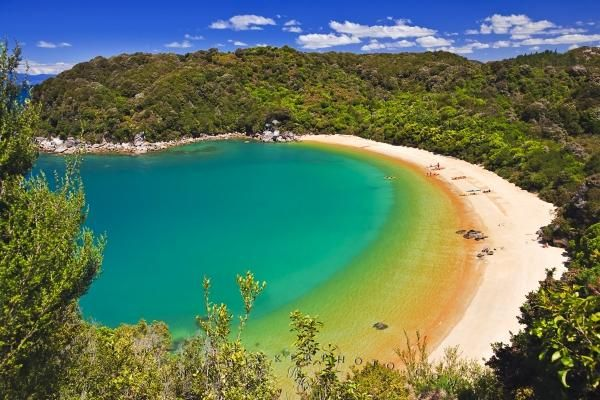 A beautiful aerial view of the curved sandy beach of Te Pukatea Bay in the Abel Tasman National Park on the South Island of New Zealand. The Abel Tasman National Park covers an area of 22,530 hectares and is New Zealand's smallest national park