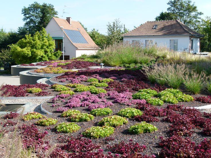 25 b sta toiture v g talis e id erna p pinterest toit vegetal toiture terrasse bois och. Black Bedroom Furniture Sets. Home Design Ideas