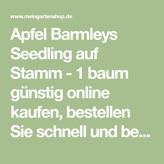 Apfel Barmleys Seedling auf Stamm - 1 baum günstig online kaufen, bestellen Sie schnell und bequem online