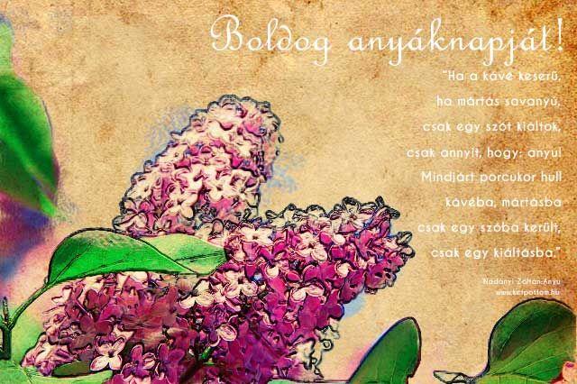 anyák napi képeslap/ postcard for motherday