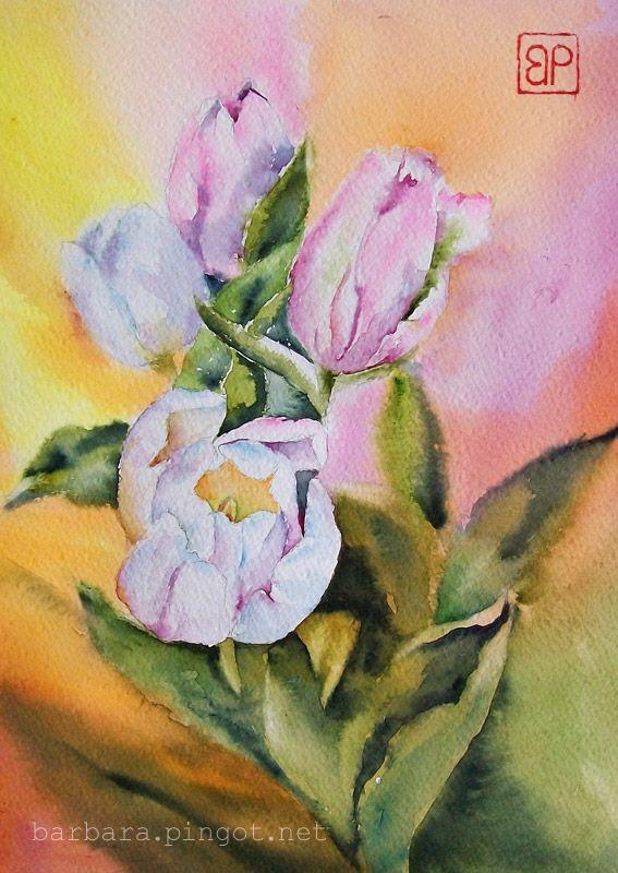 Tulipanowo by stokrotas