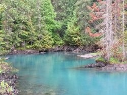 Not that its really a secret, its just so tucked away that most people have never heard of the Nisga'a lava flows. Almost 100 KM north of Terrace, 30 km of which are on a dirt road, Nisga'a provincial park is found in one of the most remote area's in British Columbia, Canada.