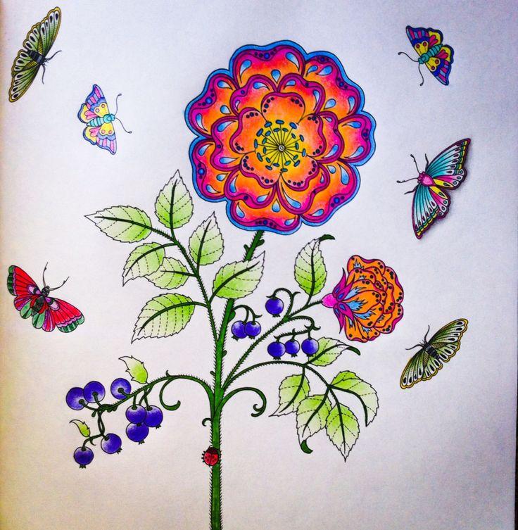 Jardim Secreto Secret Garden By Amanda Art Coloring BooksColouringJohanna