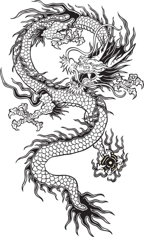 transparent chinese dragon tumblr black and white google search resources stickers. Black Bedroom Furniture Sets. Home Design Ideas
