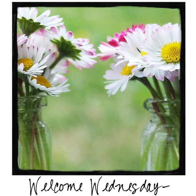 Welcome Wednesday! Come by and visit A Warm Hello!