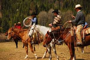 montana: Ranch, Real Cowboys Girls, Bless Cowboys, Montana, Traffic Jam, Cowboys Girls Y All, Cowboys Cowgirls, Cattle, Country