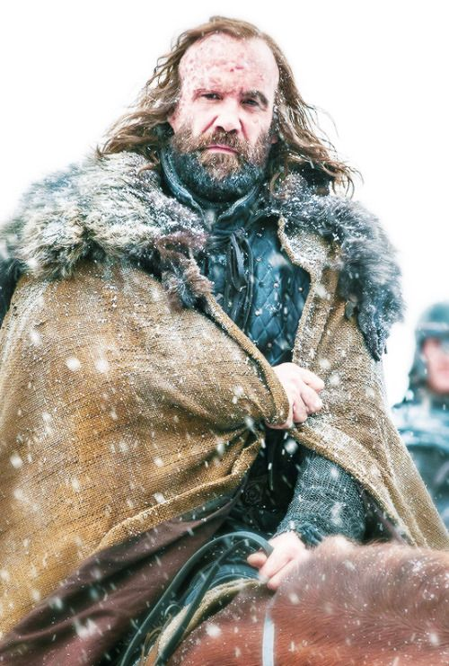 "Sandor Clegane ""The Hound"" / Game of Thrones"