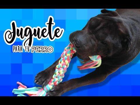 Cómo hacer un juguete para tu perro - YouTube