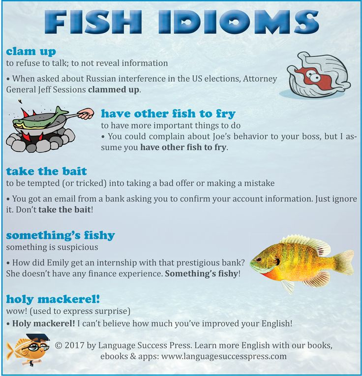 Improve your English with these fish idioms! www.languagesucccesspress.com