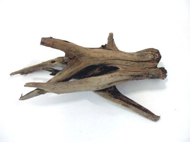 Aquarium Driftwood Photo, Detailed about Aquarium Driftwood ... | 유목 | Pinterest | Aquarium driftwood, Drift wood and Photos