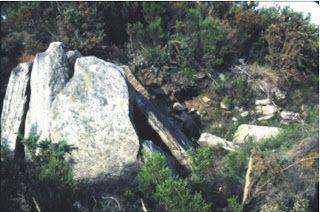 Anta da Medoña do Prado da Fonte. San Andrés de Lousada, Xermade. Lugar da Abelleira Atópase formando parte dunha necrópole composta por catro mámoas.