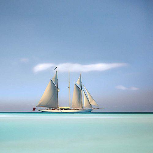 wwwchemina:    3 masted schooner by cardijo on Flickr.