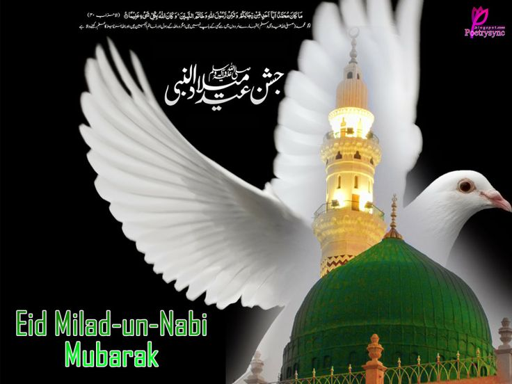 Jashn-e-Eid-Milad-Un-Nabi Wishes Wallpaper Card Picture