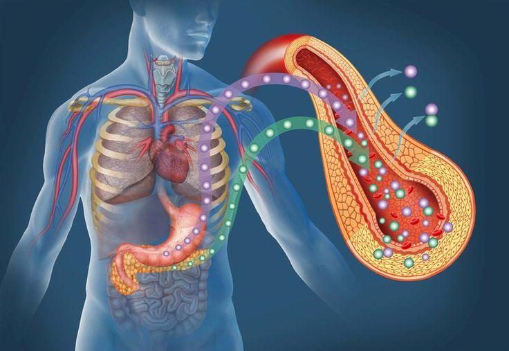 Studiile au arătat că excesul de aciditate din organism provoacă majoritatea îmbolnăvirilor, în t...