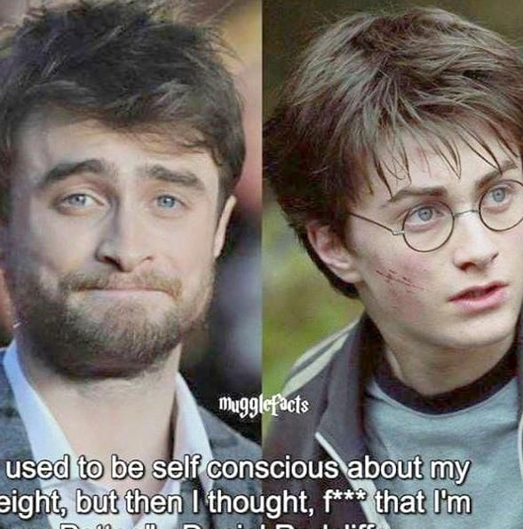 Harry Potter And The Chamber Of Secrets Price In Relation To Harry Potter Magic Ridiculous Harry Potter Genre Harry Potter Spells Harry Potter Memes Hilarious