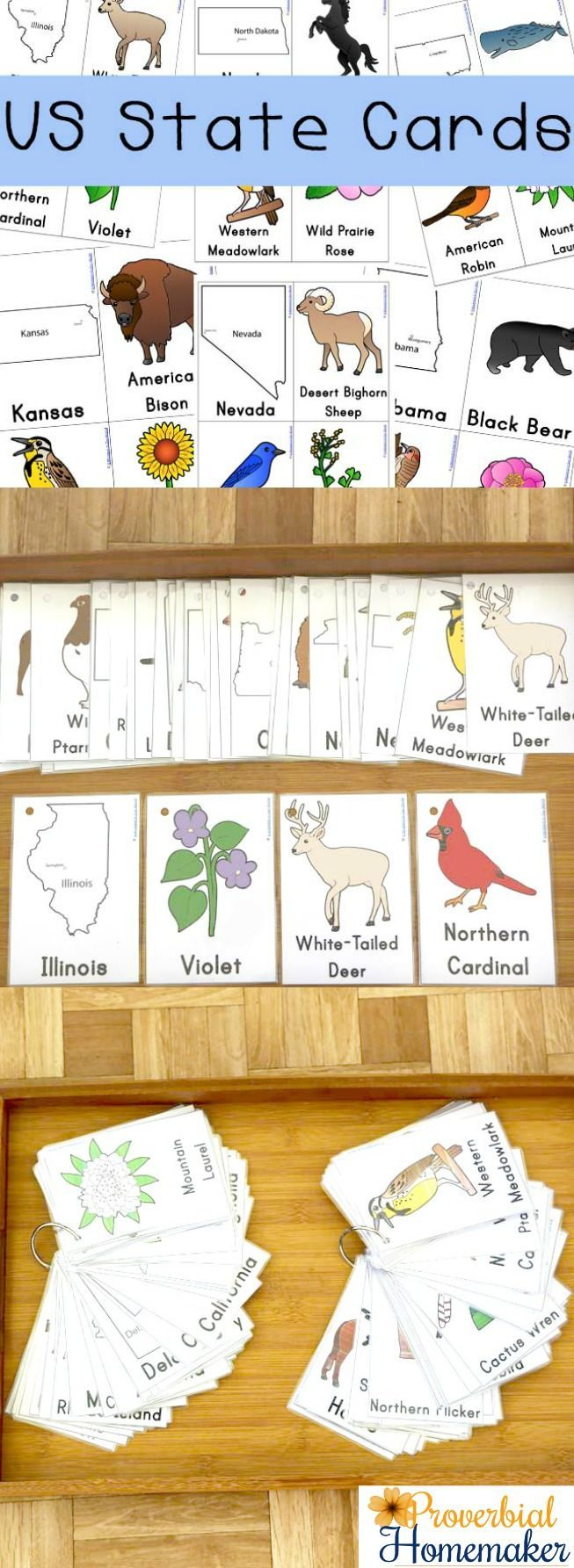 Download these free U.S. State Flash Cards for a fun and easy way to learn each state, including the state flower, animal, and bird!