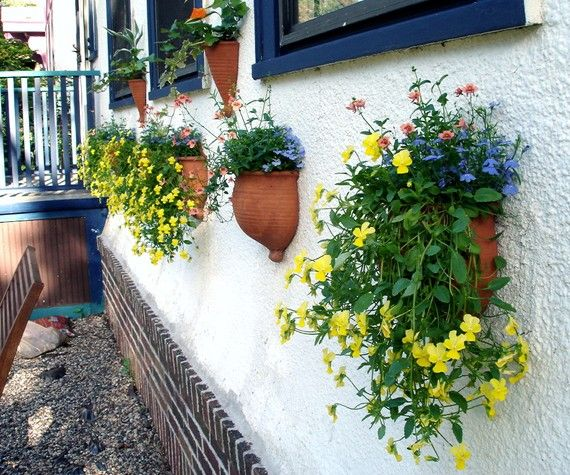 1000 Images About Wall Planters On Pinterest Planters 640 x 480