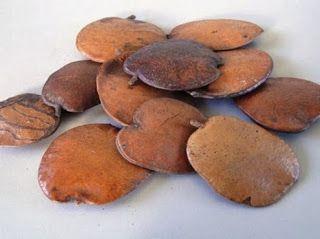Chá de sucupira controla artrite, artrose e reumatismo | Cura pela Natureza.com.br